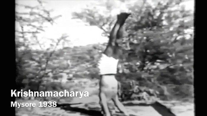 krishnamacharya-yoga