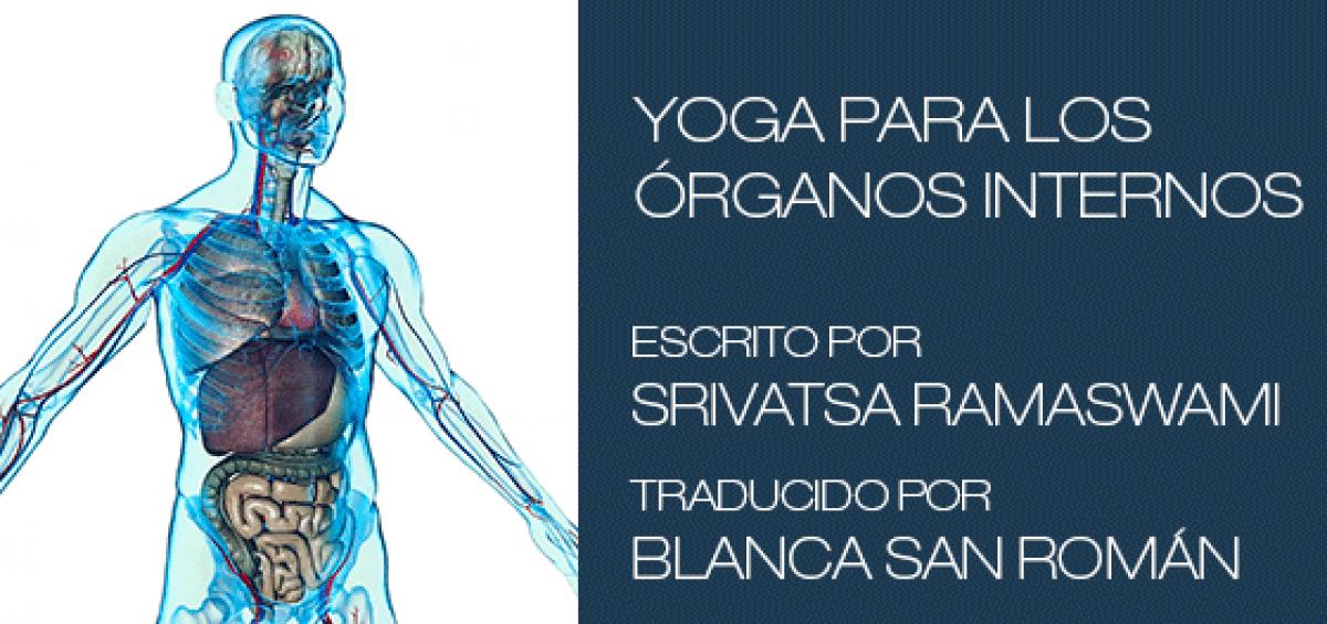 Yoga para los órganos internos - Yoga Vinyasa Krama