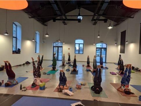 Master class de yoga vinyasa krama en el february fitness 2020